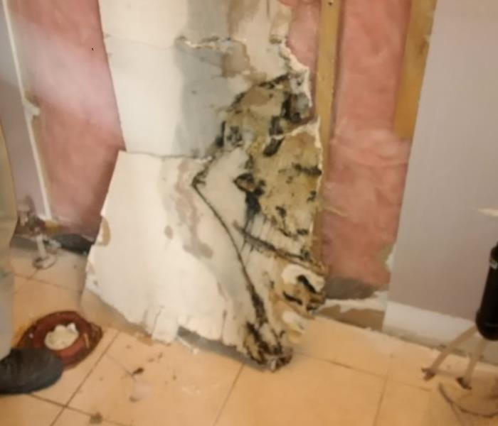 Sewage Leaking Into Wall Cavity, Milton ON Before