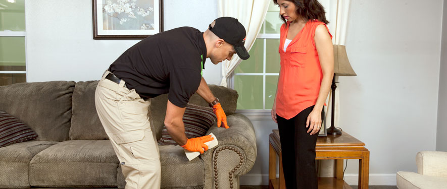 Milton, ON carpet upholstery cleaning